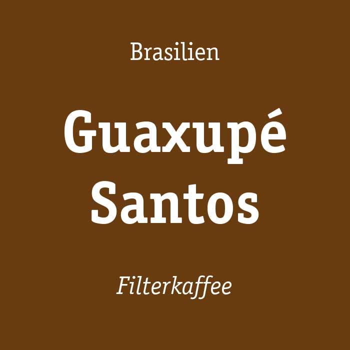 Guaxupe Santos